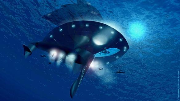 3021938-slide-seaorbiter0061920
