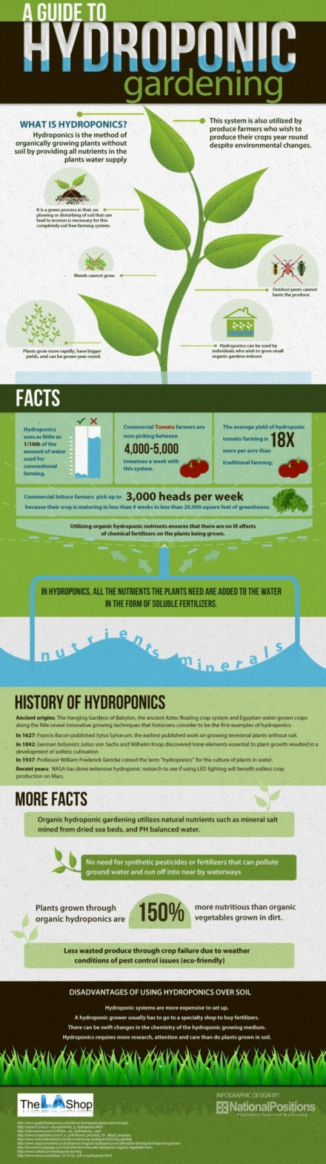 The Benefits of Hydroponic Gardening: An Infograph (PHOTO)