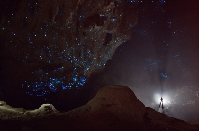 This amazing starry sky is a cave full of glowworms in New Zealand