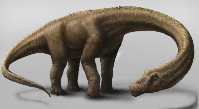 Supermassive Dinosaur Fossils Found In Argentina