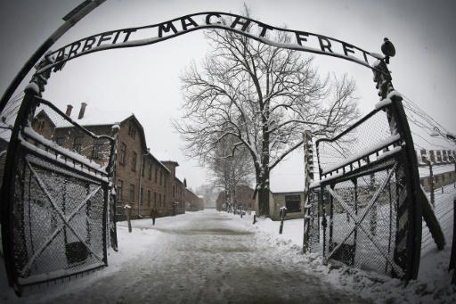 Polish Holocaust survivor who escaped Auschwitz dies aged 98