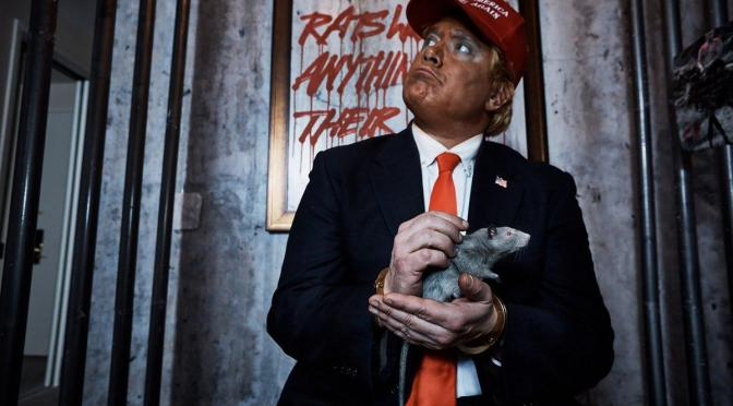 Anti-Trump artists turn room in President's Manhattan hotel into rat-filled exhibit
