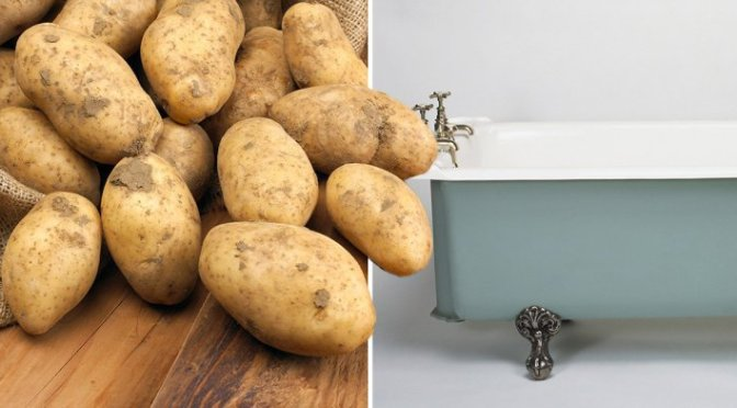 Man caught filling hotel bathtub up with potatoes while wearing a bra and high on MDMA